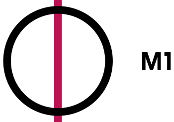 Ifjúsági, és gyermek műsor – MTV – 2015.08.09.
